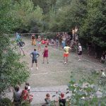 7 Can Banal Volley Ball